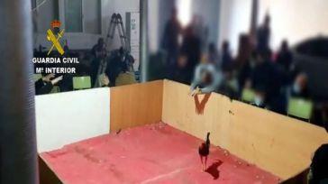 Drogas, armas y apuestas: Disuelven una pelea de gallos ilegal con cerca de 90 personas