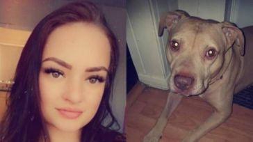 Un perro ataca hasta la muerte a su dueña en Reino Unido