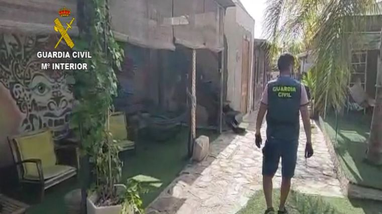 Detenido un matrimonio por hacer peligrosos rituales con ayahuasca y escamas de sapo bufo